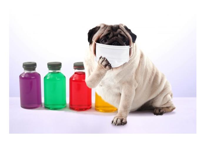 花粉症の症状-風邪の頭痛との見分け方と対処法-